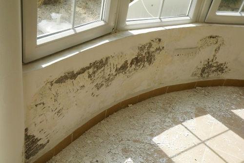 How to identify rising damp in your home