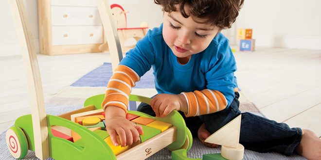 Fill Your Child's Life With Immense Joy By Buying Shumee Toys