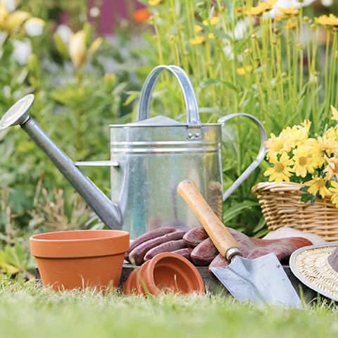 Spring Is Coming: Time to Get the Garden Sorted